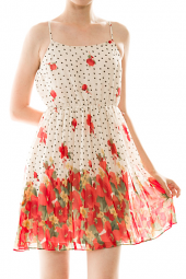 Sleeveless Dotted Floral Print Mini Chiffon Dress