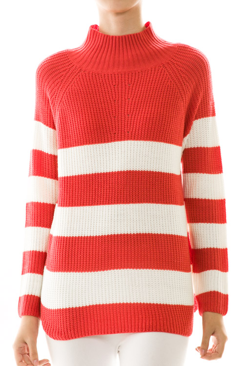 Stripe Print Turtle Neck Sweater Knit